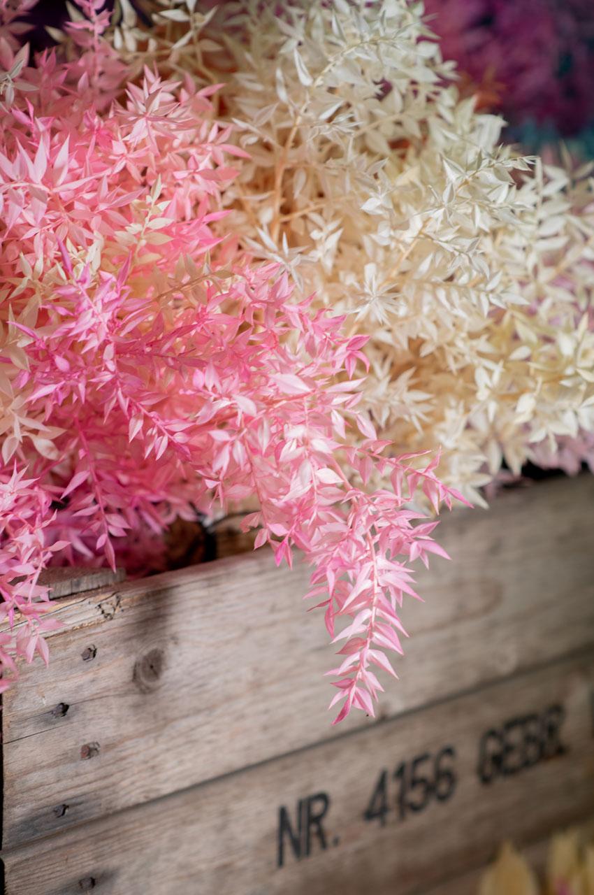 Foglie per fare volume nei mazzi di fiori