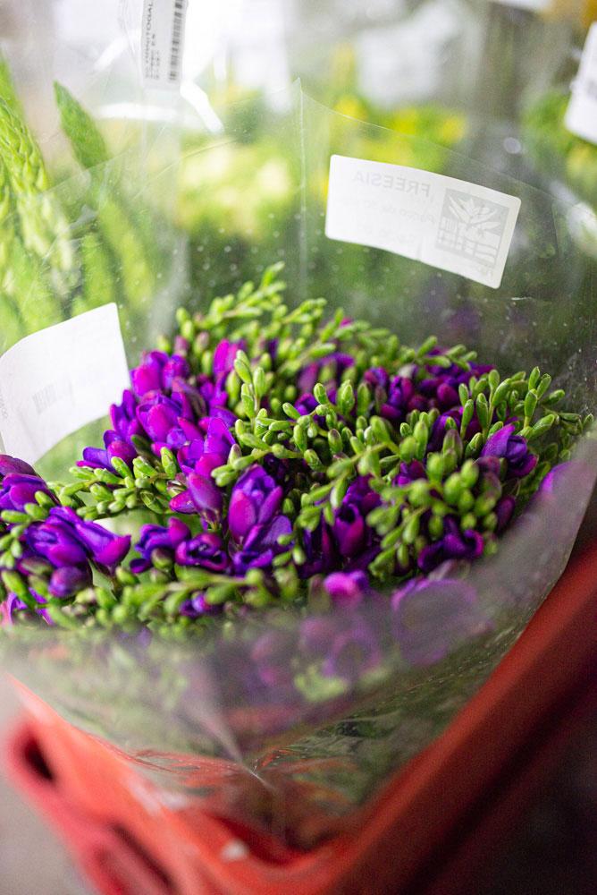 Foto mazzo di fiori viola in vendita